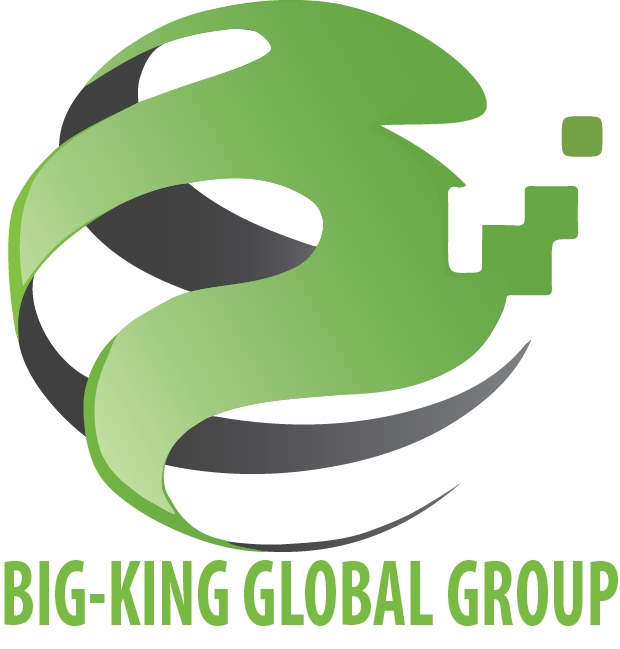 Big-King Logo